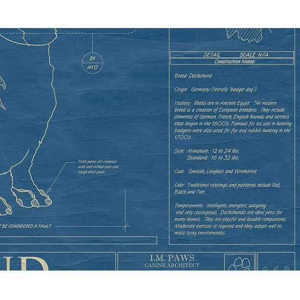 Large dog blueprints framed animal wall art uncommongoods large dog blueprints framed animal wall art uncommongoods malvernweather